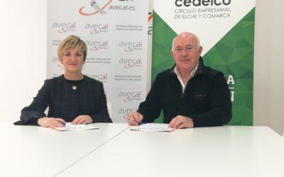Avecal y Cedelco firman un convenio para apoyar el desarrollo del tejido empresarial del calzado del Baix Vinalopó
